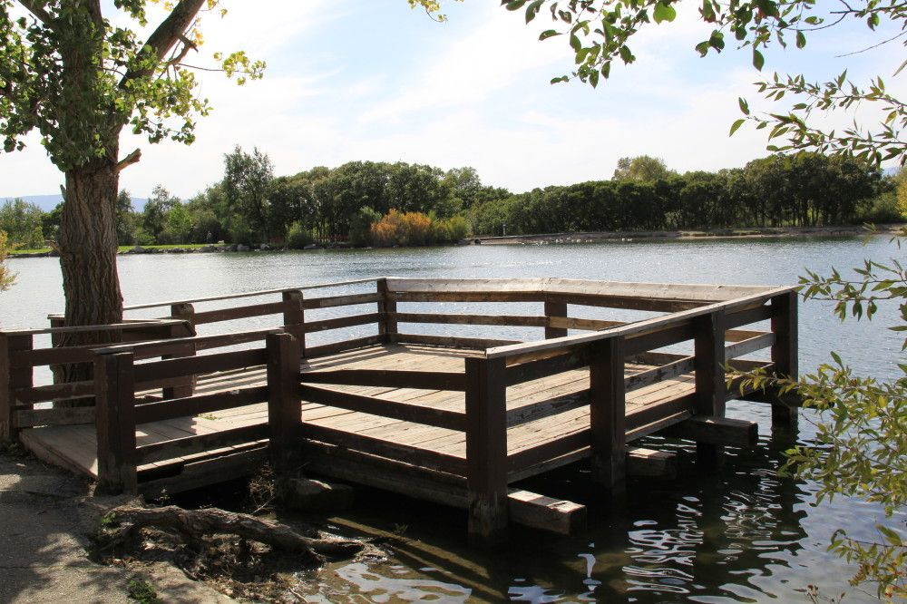 Dock on the pond hikes and nature photos in 2019 farm for Pond decorations