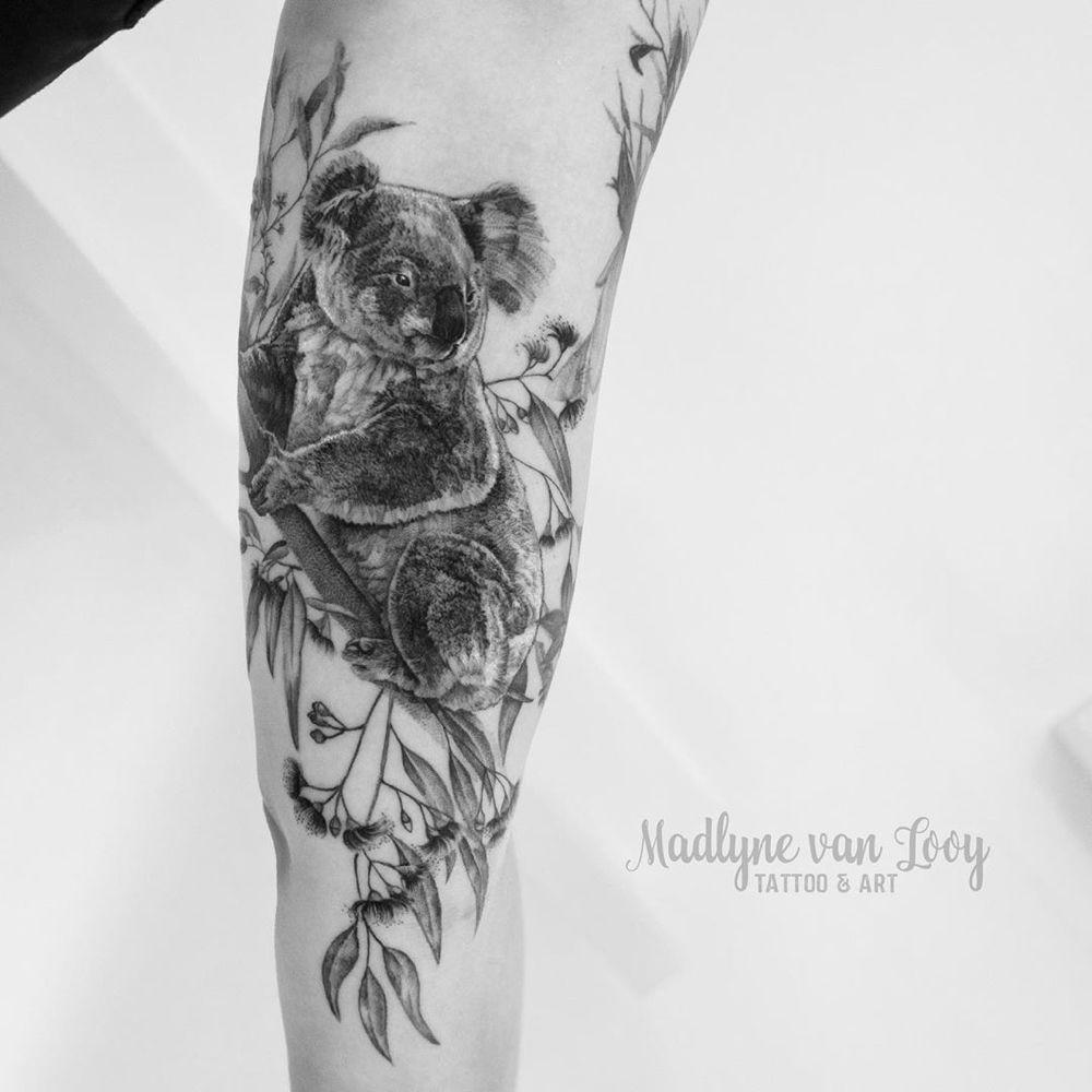 """, Madlyne van Looy Tattoo & Art on Instagram: """"Wieder ein Wanna-Do welches schon lang verewigt werden wollte. Der Koala darf jetzt Kakadu und Kookaburra Gesellschaft leisten 😍 🐨 🐨 🐨 . .…"""", My Tattoo Blog 2020, My Tattoo Blog 2020"""