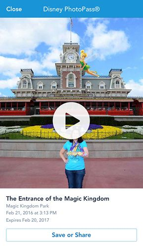 Downloading Photopass Pictures in the My Disney Experience