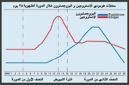 الهرمونات الجنسية الأنثوية تحمي الرجال Progesterone Oestrogen Chart