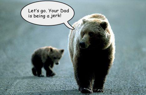mama bear and baby bear Funny Momma bear, Bear, Single
