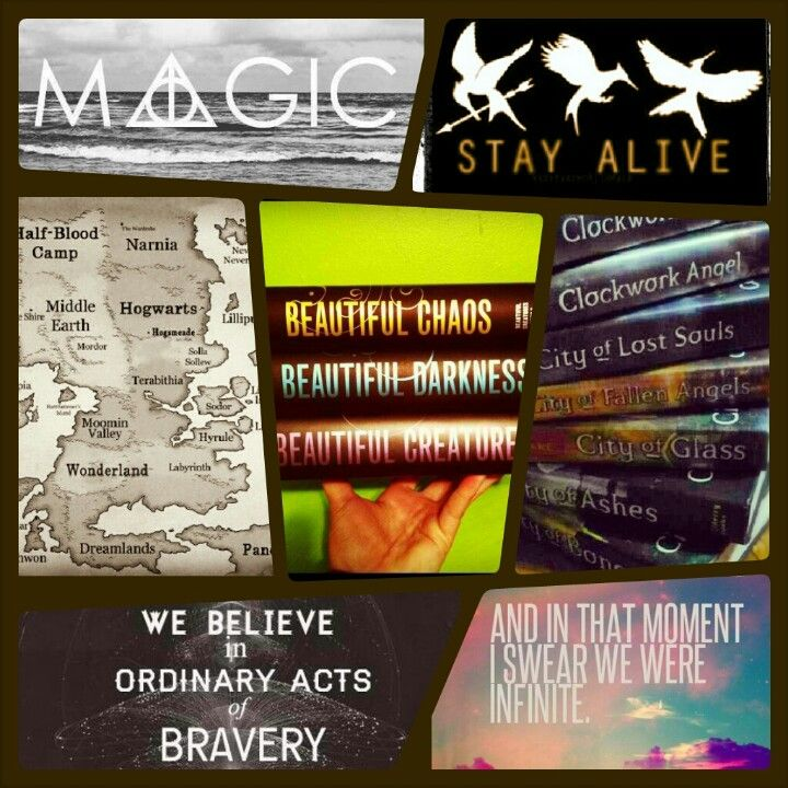 Harry Potter, The Hunger Games, Caster Chronicles, TMI, Divergent, Perks of Being a Wallflower