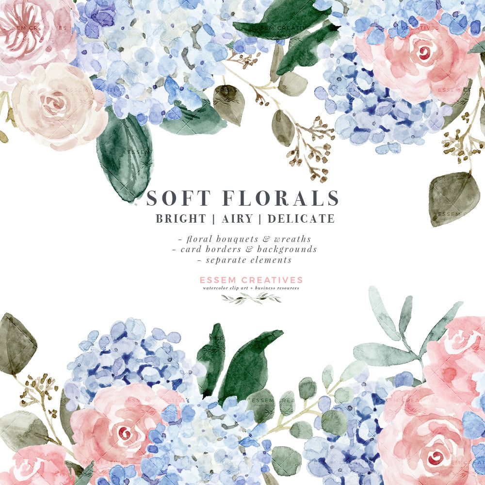 Watercolor Hydrangea Clipart Soft Watercolor Flower Graphics