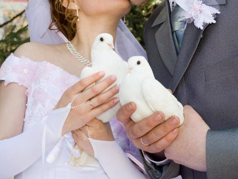 Gretna Green Weddings At The Wedding Bureau