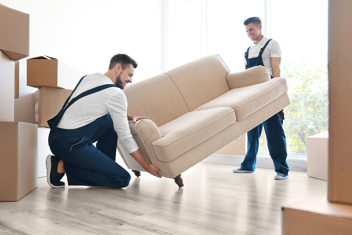 Local furniture removals | Best moving companies, Furniture removalists,  Moving company