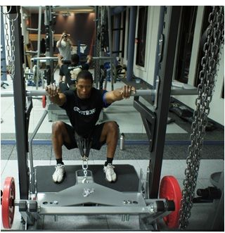Pitshark Belt Squat Power Rack Attachment Crypted