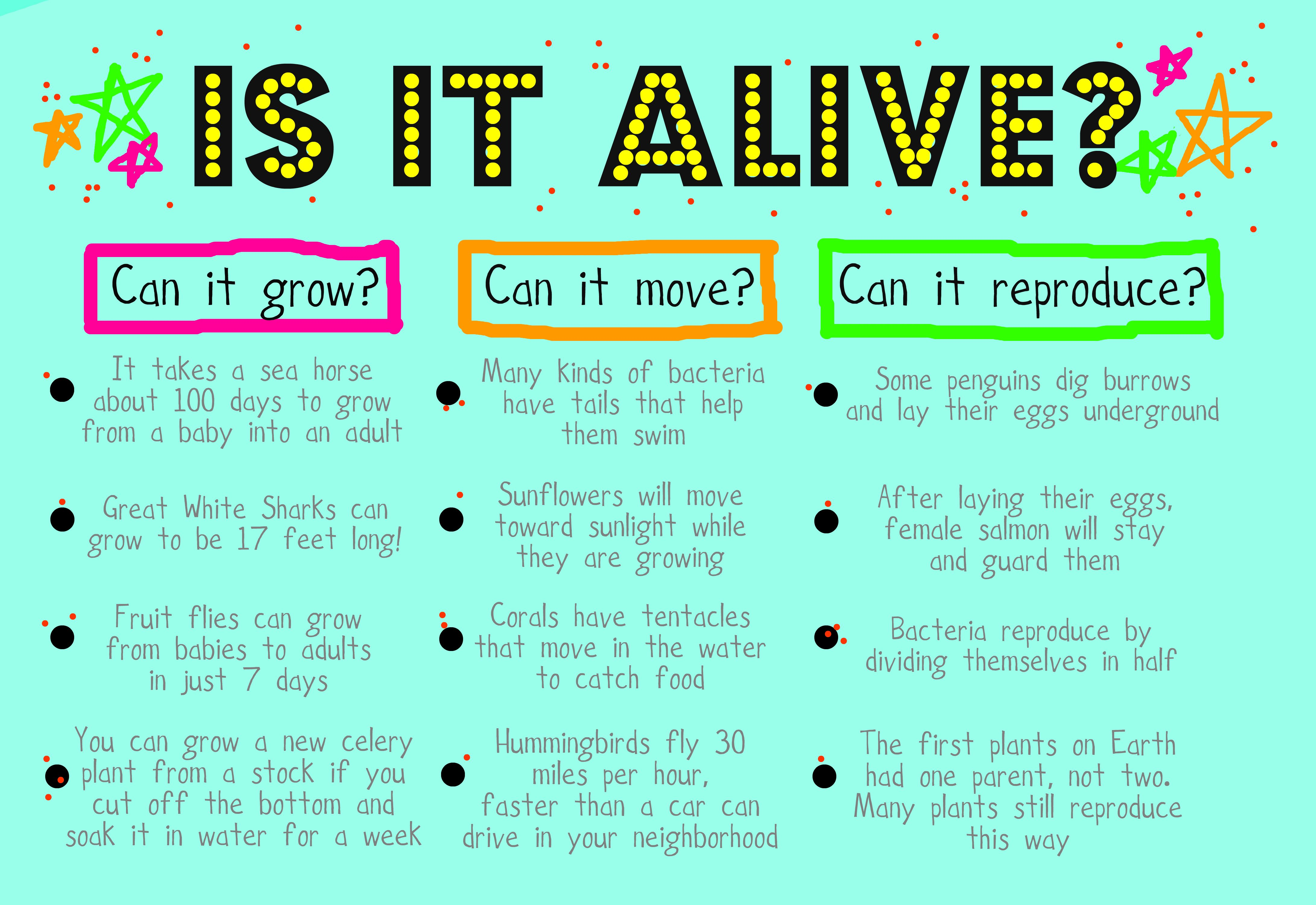 Classroom Poster Describing Characteristics Of Living