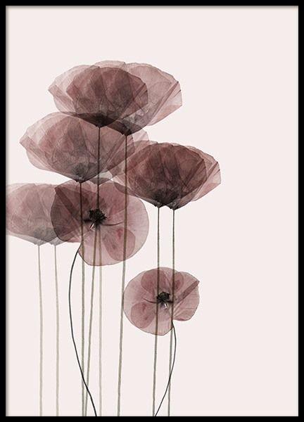 Poppy Bunch Poster in der Gruppe Poster / Botanik bei Desenio AB (10968)