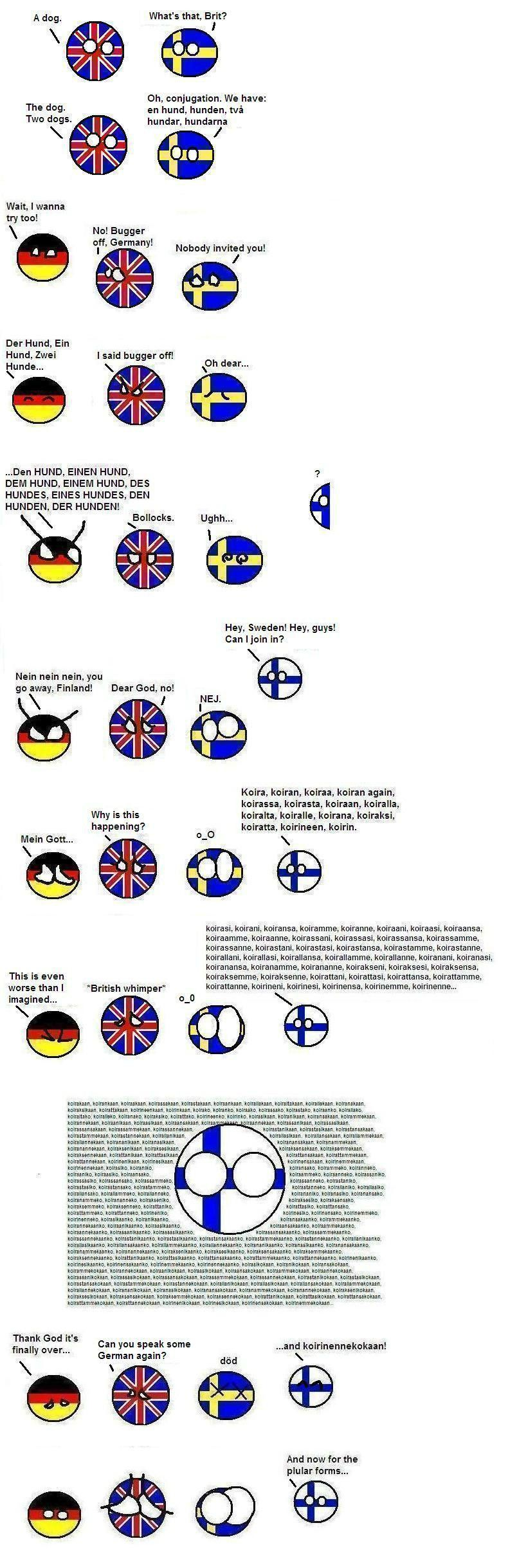 """Behold the glorious complexity of Finnish conjugations! Hmm... Maybe, since """"koira"""" is a noun, they are inflections? I'm not sure, but I do know that Finnish is an awesomely complex language and I enjoy learning it."""