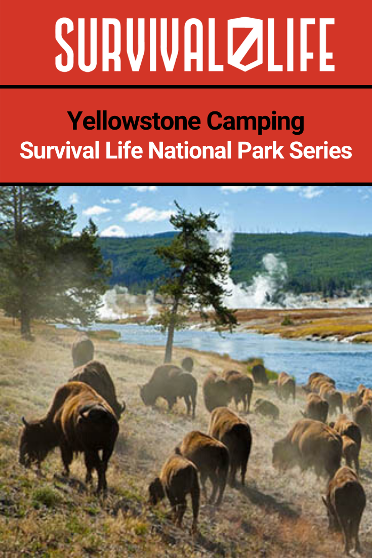 Yellowstone Camping | Survival Life National Park Series ...