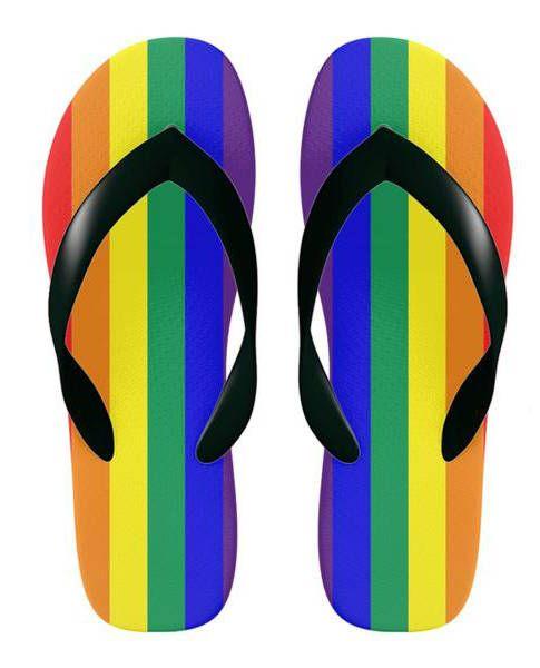 Bisexual flip flop