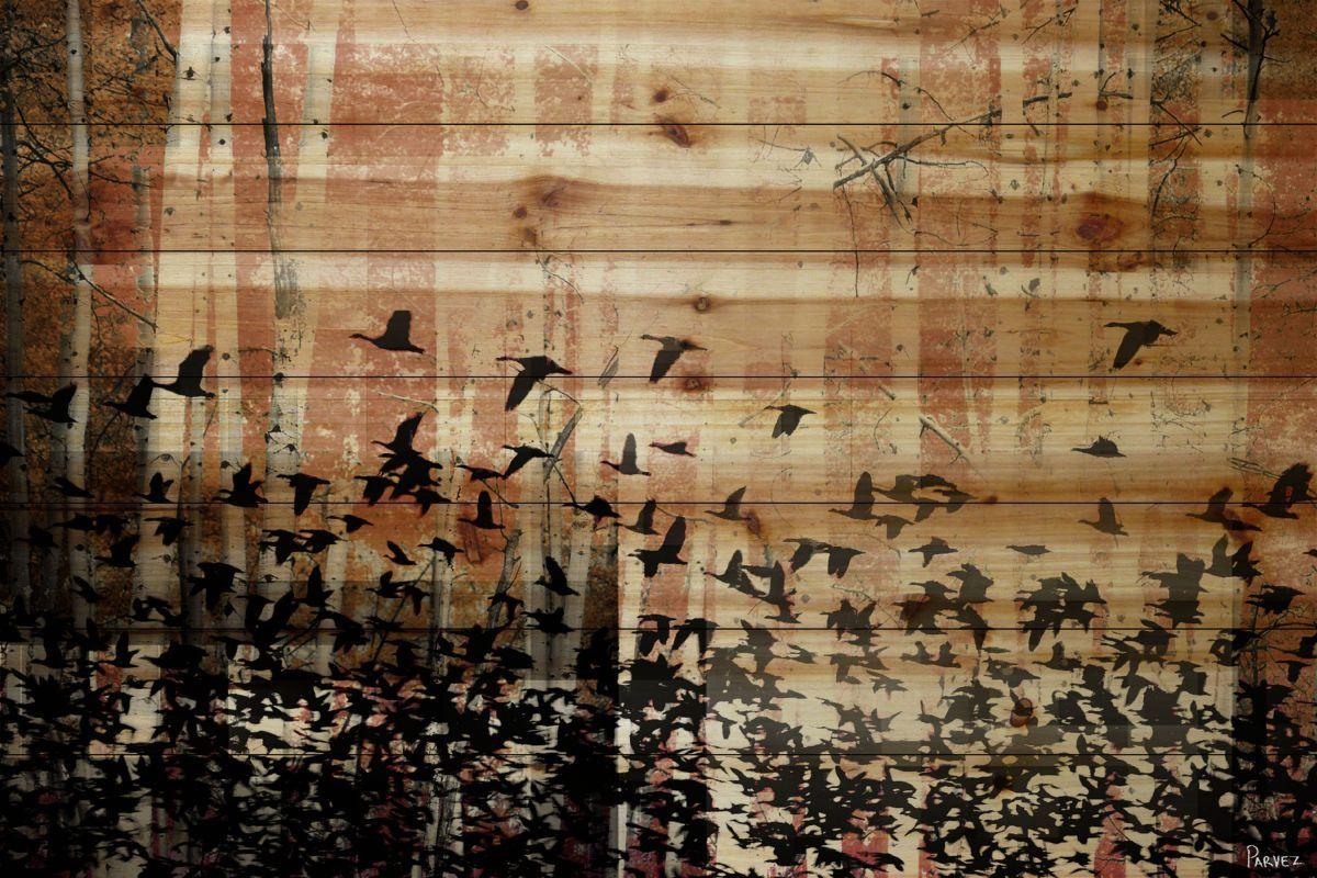 Parvez taj aspen wood on pine wood art print on natural pine wood