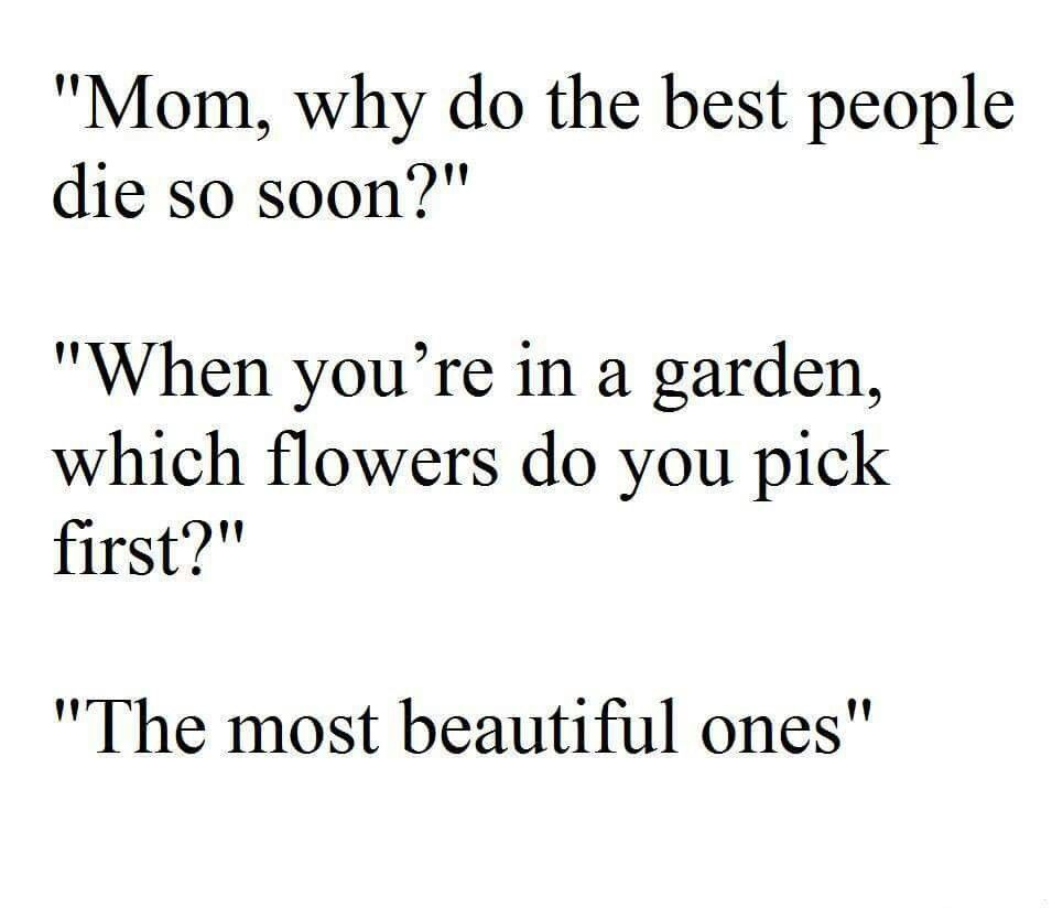 The beautiful ones...