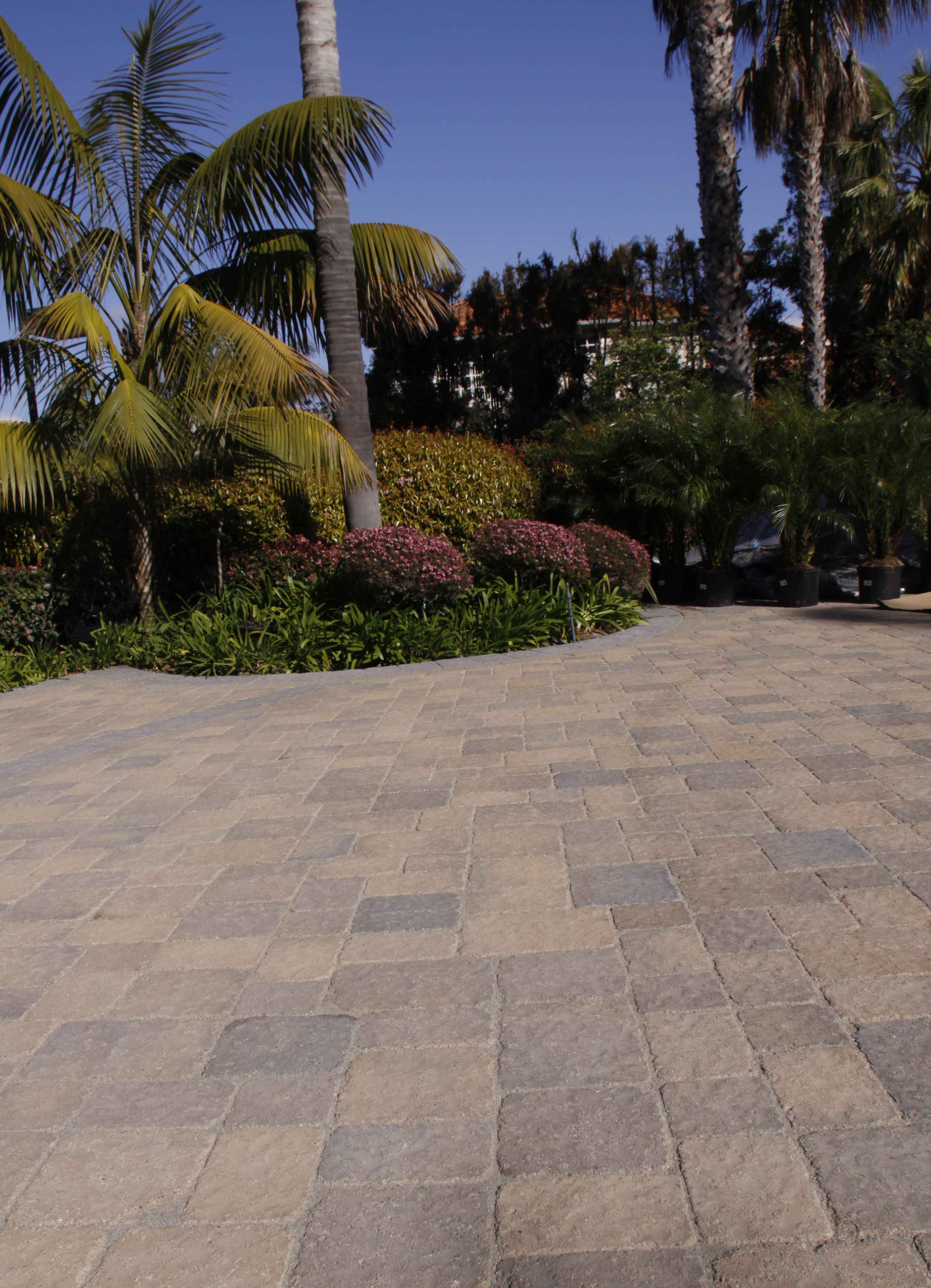 a backyard well done with our siena embossed 4pc stunning