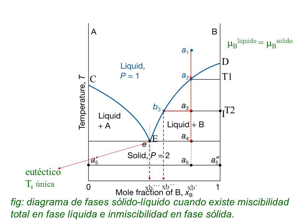 Diagrama de equilibrio de aleaciones totalmente solubles en estado ...
