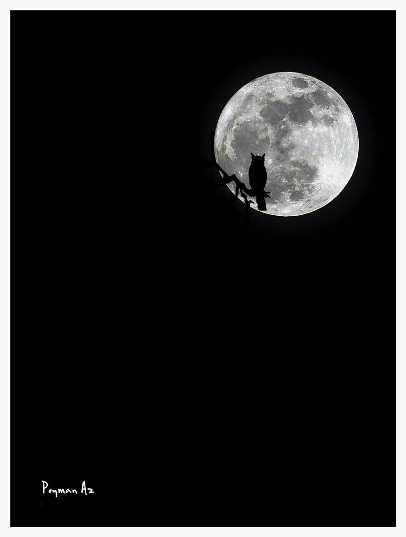 photograph oo by peyman az on 500px moon pinterest. Black Bedroom Furniture Sets. Home Design Ideas