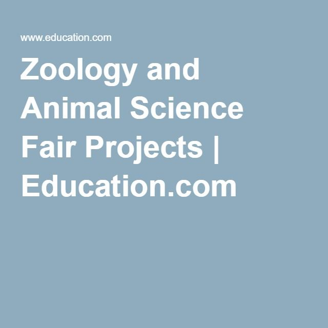 Zoology And Animal Science Fair Projects