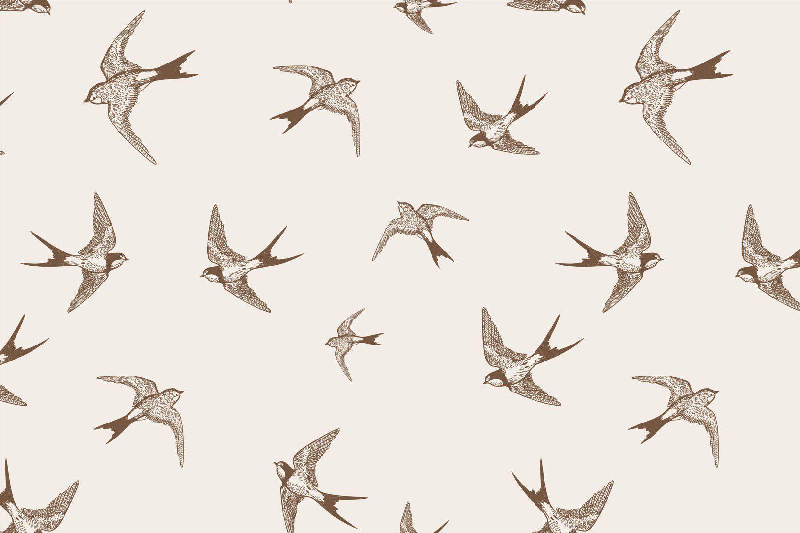 Illustrative Swallows Wall Mural Muralswallpaper Wall