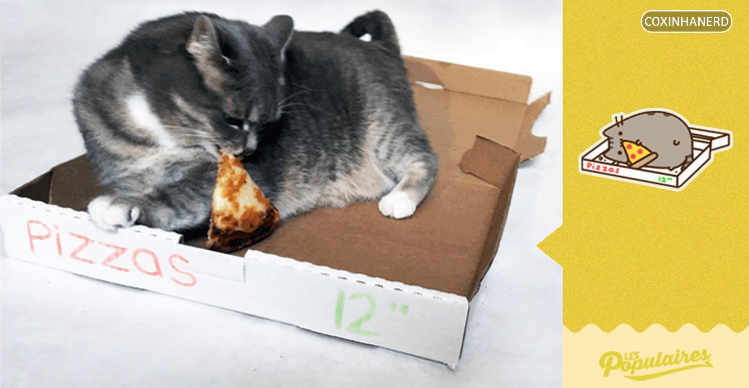 gato faz cosplay de pusheen the cat