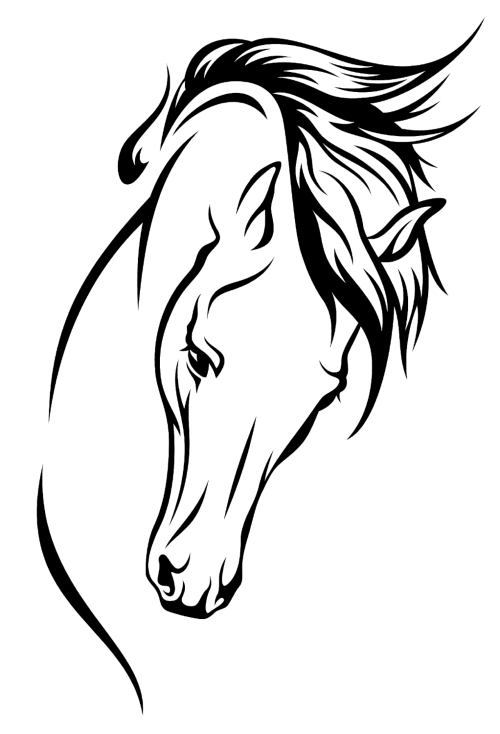 Pin By Maribel Garcia Miguel On Klipart Png Horse Stencil Horse Drawings Horse Tattoo