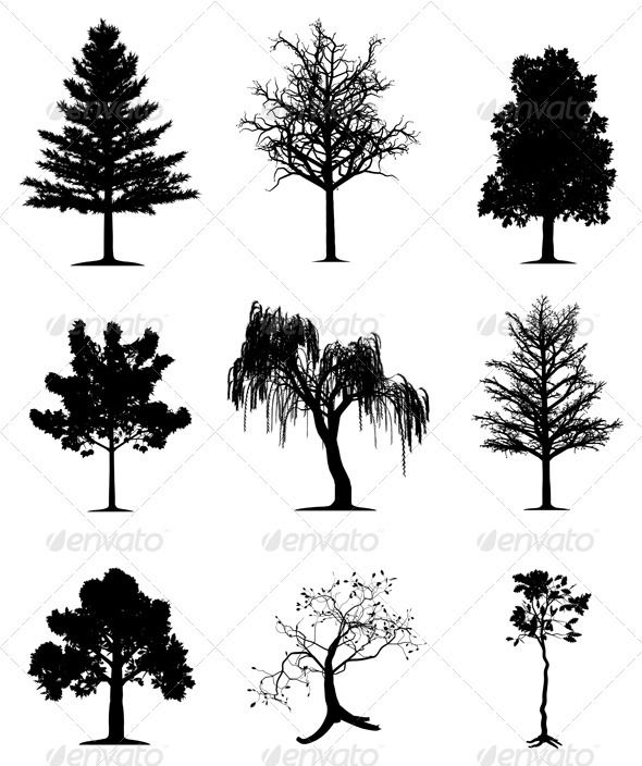 Trees collection | Pinterest | Tatuajes, Ideas de tatuajes y Dibujo