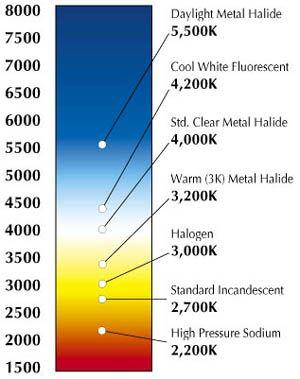 Colour temperature lumicrest high cri led lighting also light color rh pinterest