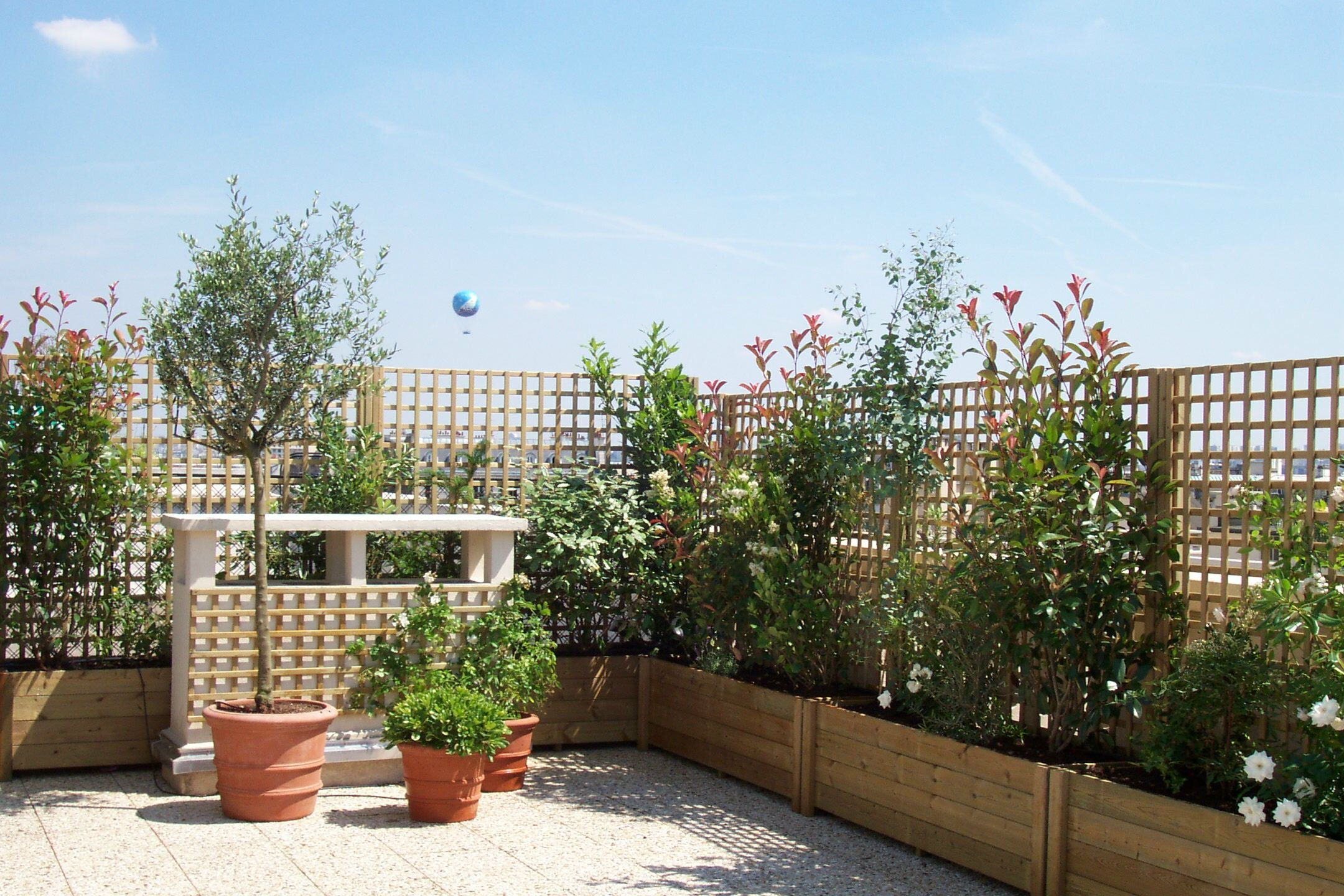 Astuces conseils comment am nager sa terrasse terrasses for Terrasse amenagement plantes