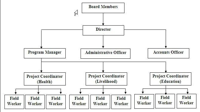 Typical Non Profit Organizational Chart