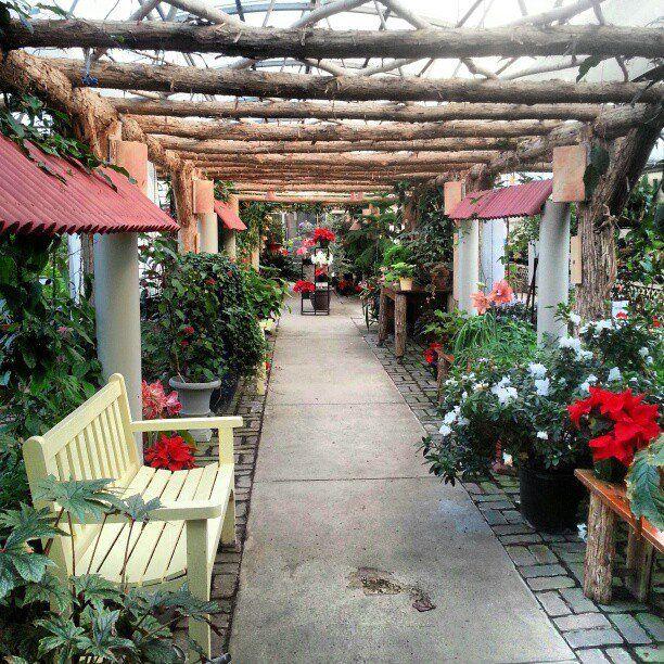 Spring House Apartments: Garden, Spring Break, Spring