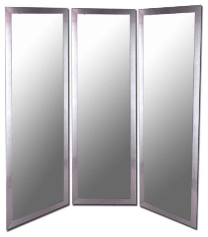 Use Single Full Length Mirrors Hang With Door Hinges On