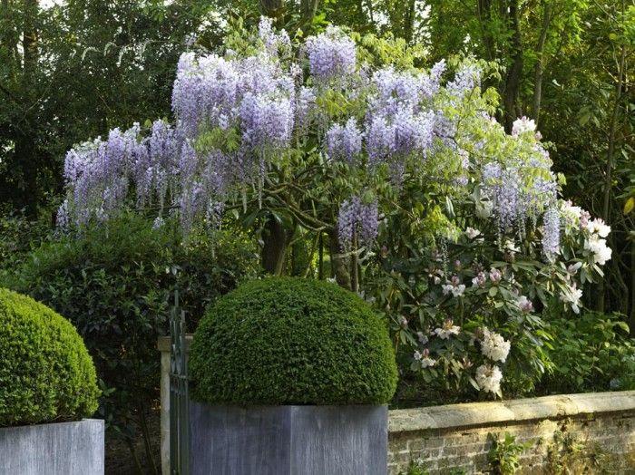 Les jardins agapanthe grigneuseville normandie for Paysagiste anglais celebre