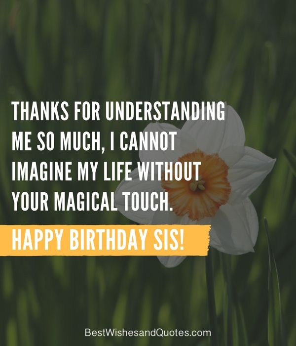special and emotional ways to say happy birthday sister