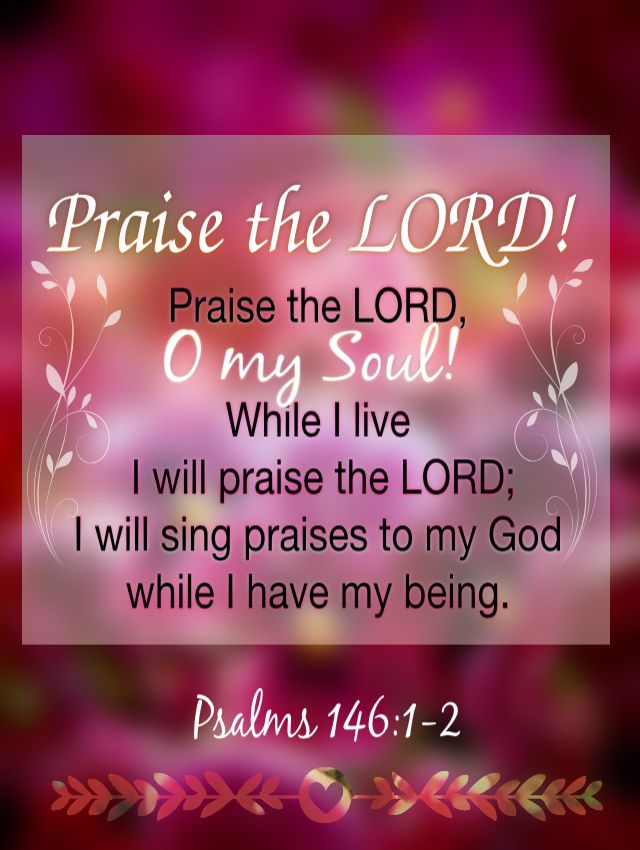 Praise the Lord O my Soul While I live I will praise the Lord I ...