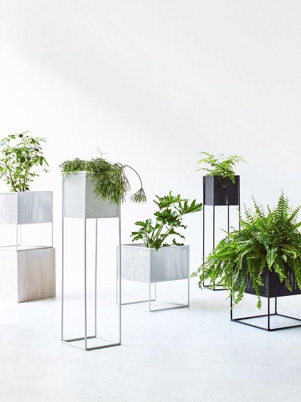 8 Great Plant Pots The Design Files Australia S Most Popular Design Blog Plant Decor Plant Stand Indoor Planter Design