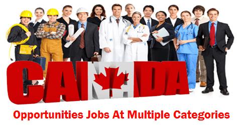 Multiple Vacancies Required In Canada Job Work Visa Marketing Jobs