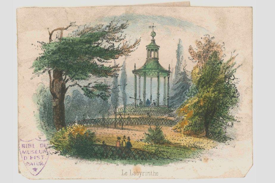Le Labyrinthe - Jardin du Roi - Jardin des Plantes, Estampe (1850 ...