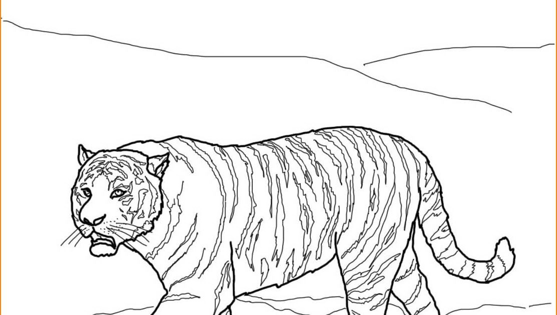 21 Gambar Kartun Binatang Liar Kalau Anda Belum Tahu Bagaimana