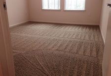 Cleaning Services In Dallas Texas Rug Cleaning Carpet Cleaning Service Cleaning Upholstery