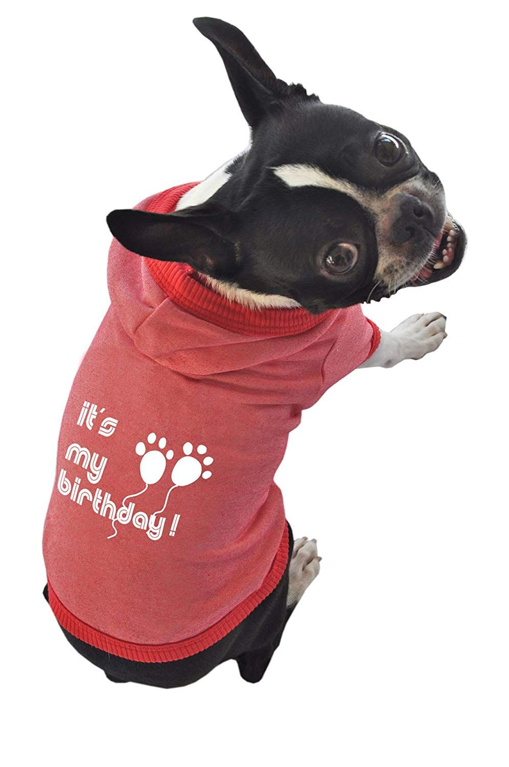 Ruff And Meow Dog Hoodie Its My Birthday Red Medium Be Sure To Check Out This Awesome Product Is An Affiliate Link