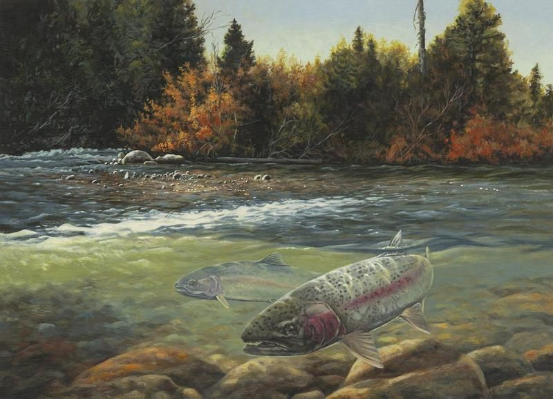 The return angling and flyfishing art by dan rickards for Fly fishing art