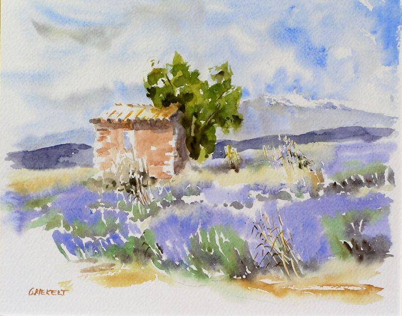 Cabanon Et Lavandes Croquis De Paysage Peinture Florale Aquarelle
