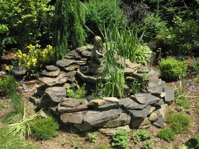garden pond tips tricks and reminders for ease of care