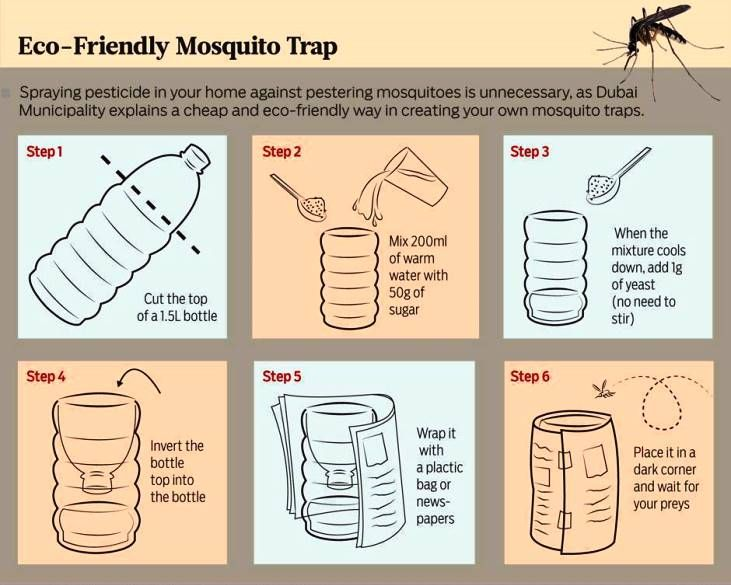 FRIENDLY MOSQUITO TRAP...