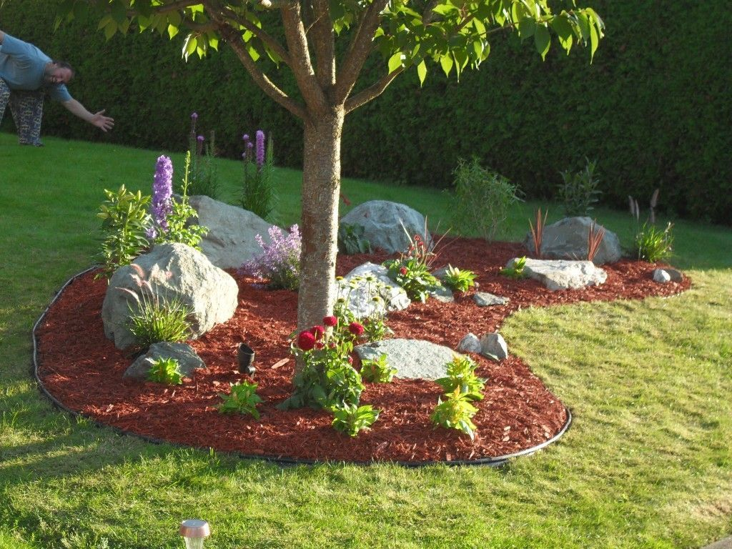 Garden trees background  Easy DIY Landscaping  Build a Rock Garden  These Are Good Pins