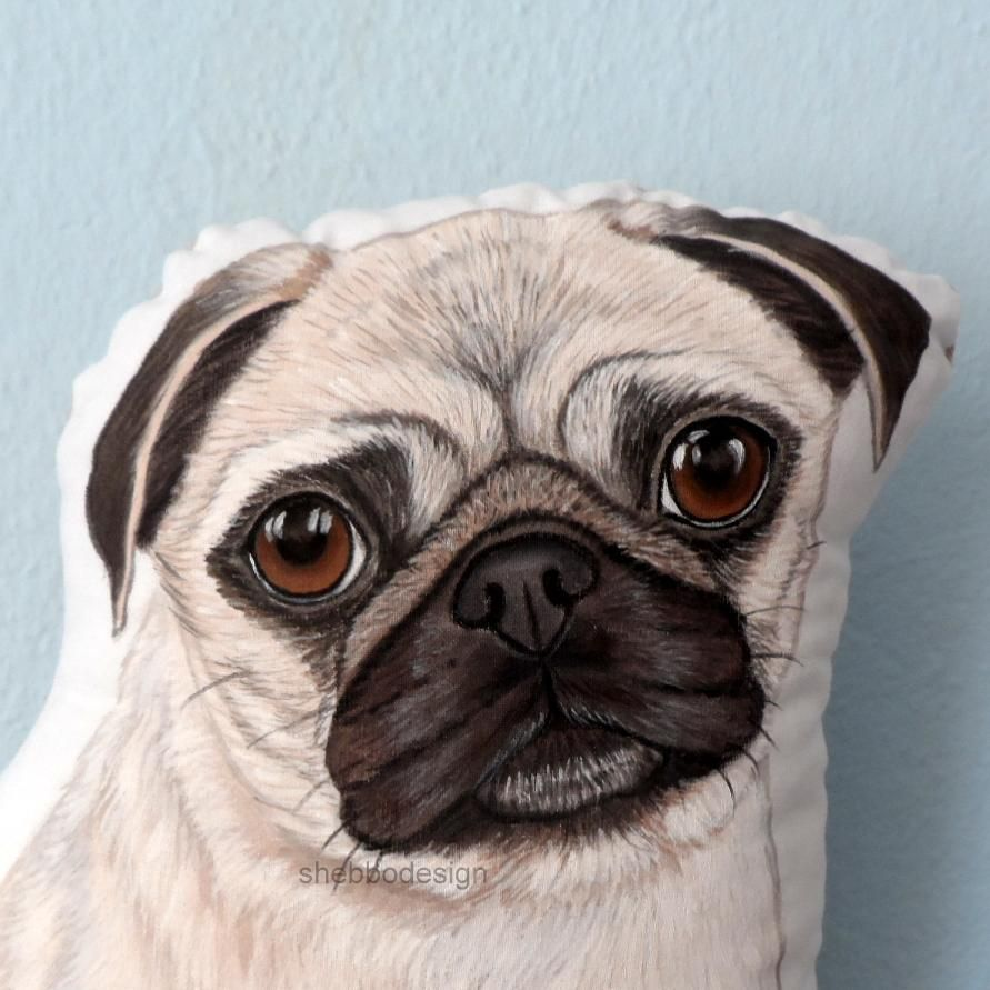 Big Dramatic Eyes Cute Faces Love Pugs Close Up Pugface Pic