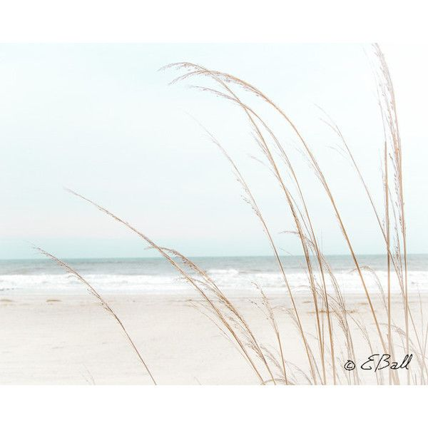 Beach Ocean Shore Sand White Waves Light Wispy Grass Photo Print Wall... ($15) ❤ liked on Polyvore featuring home, home decor and wall art