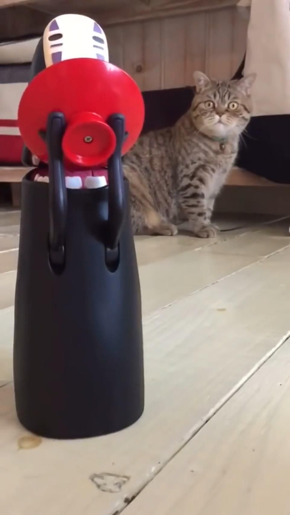 Cat stunned by No-Face toy 😅😂🤣 thumbnail
