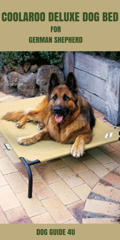 Coolaroo Deluxe Dog Bed for German Shepherd Cool dog