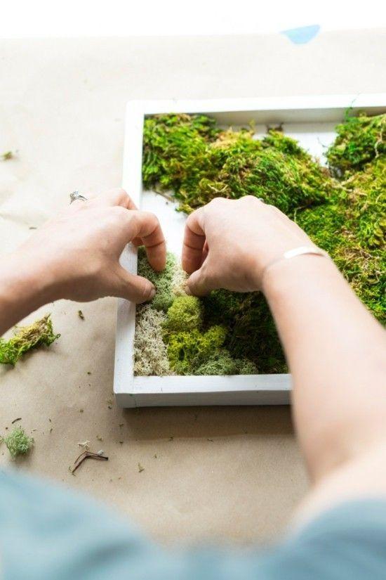 #pflanzen Mooswand selber machen wichtige Tipps und eine