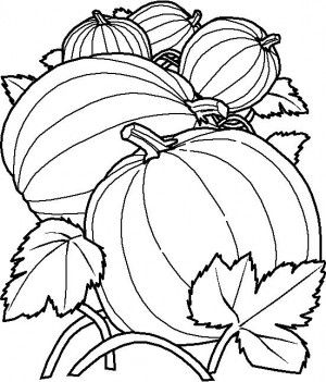 Fruits And Vegetables Coloring Page 38 Pumpkin Coloring Pages Fall Coloring Pages Halloween Coloring Pages